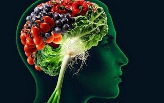 ruoasta tehdyt aivot