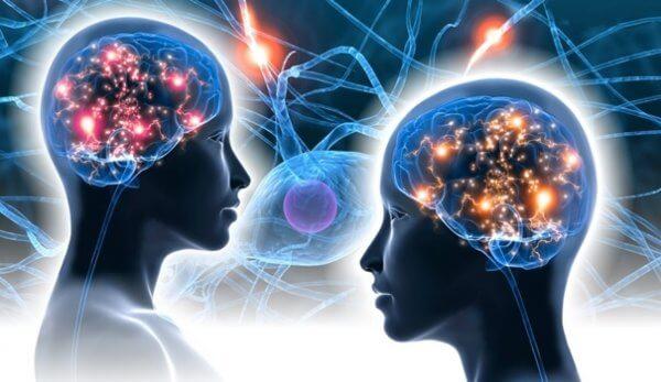 aivot ja neuronit