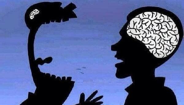 huutavat aivot