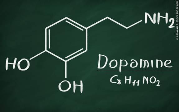 Mitä dopamiini on ja mitä se tekee?