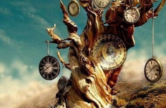 kelloja riippuu puusta