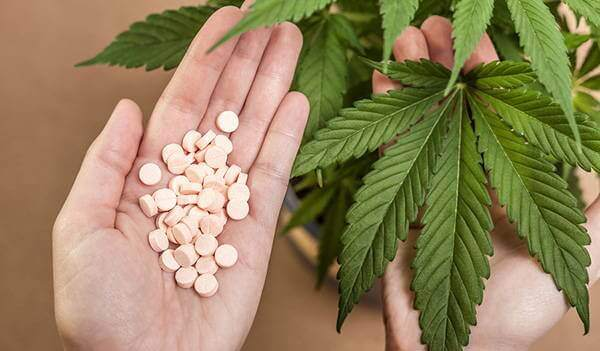 marihuana kasvina ja pillereinä