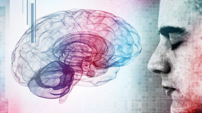 mies ja aivot