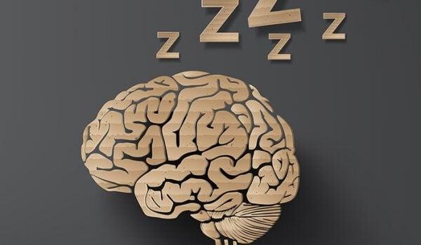 aivot nukkuvat