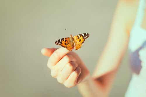 Terapian päättyminen - kuinka kohdata se, sekä tulevaisuus ilman terapiaa
