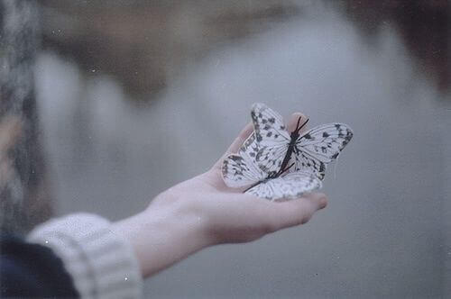 perhoset kädessä