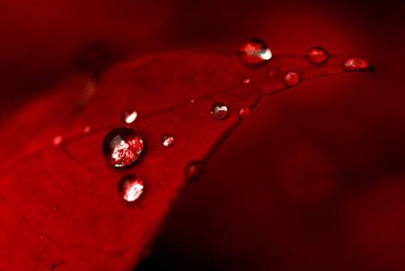 värien psykologiaa: punainen