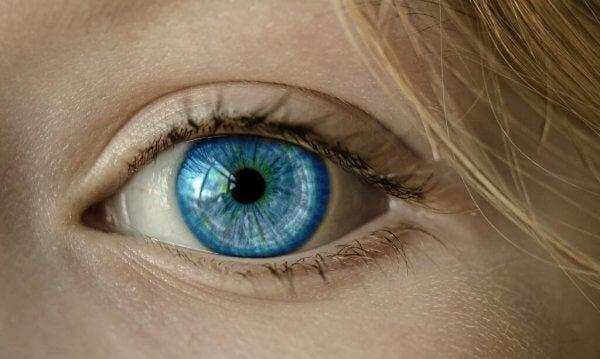sininen silmä