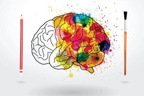 aivojen väritys