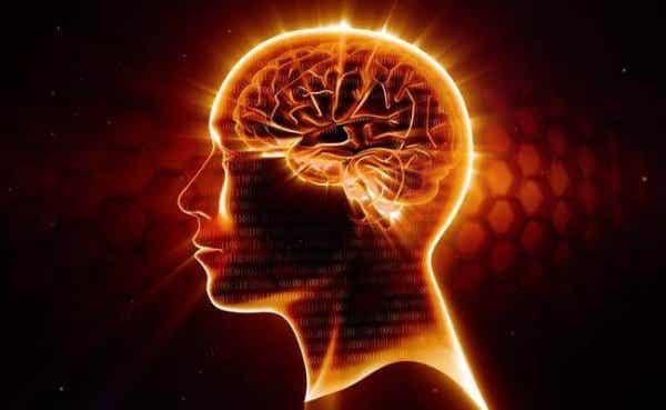Omega-3: paras suoja hermostolle
