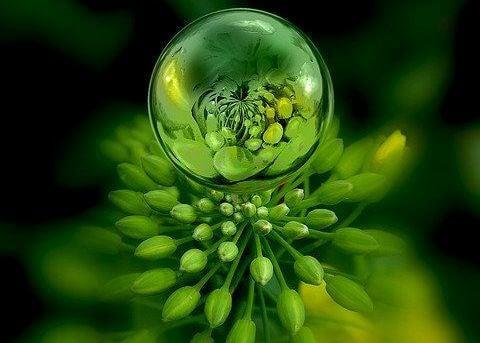 värien psykologiaa: vihreä