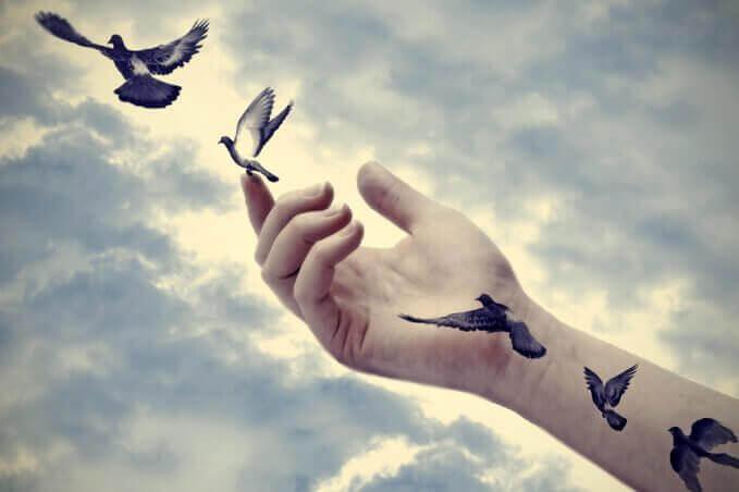 linnut pääsevät vapaaksi