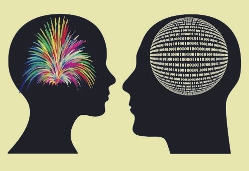 kahdet erilaiset aivot
