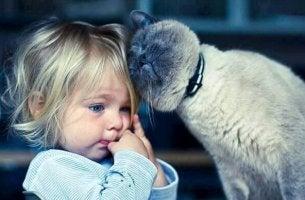 pieni tyttö ja kissa