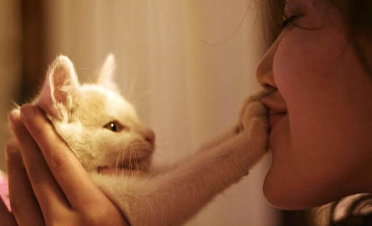 tyttö ja kissaterapia