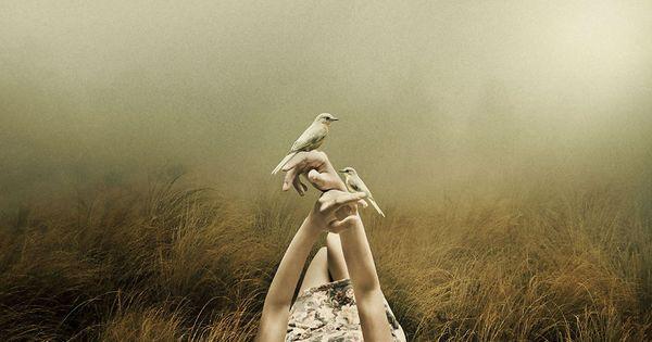 tyttö makaa maassa linnut käsissään