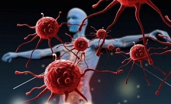 Miten voit vahvistaa immuunijärjestelmääsi?