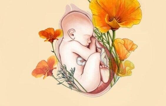 vauva kohdussa kukkien ympäröimänä