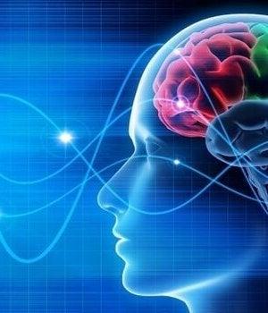 ihminen ja aivoaallot