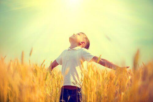 poika pellolla katselee taivaalle