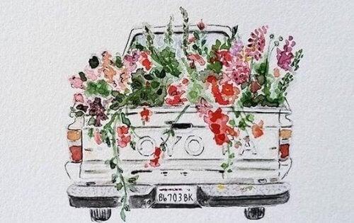 auton lava täynnä kukkia
