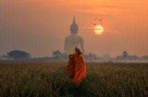 buddhalainen munkki ja aurinko