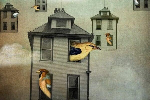 lintujen kodit