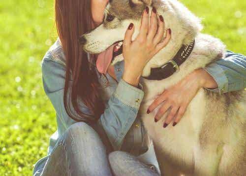 Eläinavusteinen terapia täydentävänä hoitomuotona