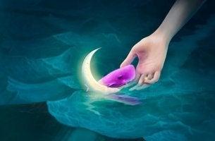 vaaleanpunainen valas vedessä