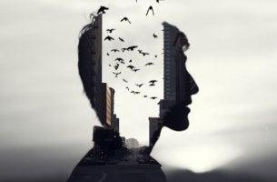 miehen pää on jakautunut, se on kaupunki jossa on lintuja