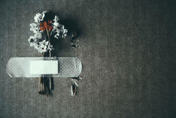 kukat teipattu seinään laastarilla