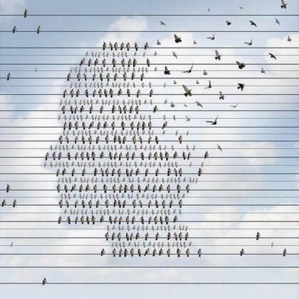 linnut langoilla muodostavat ihmisen pään