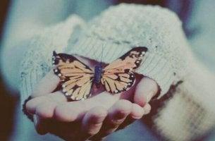 perhonen rauhallisena kämmenellä