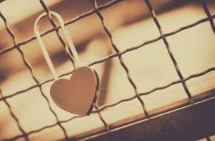 sydänlukko aidassa