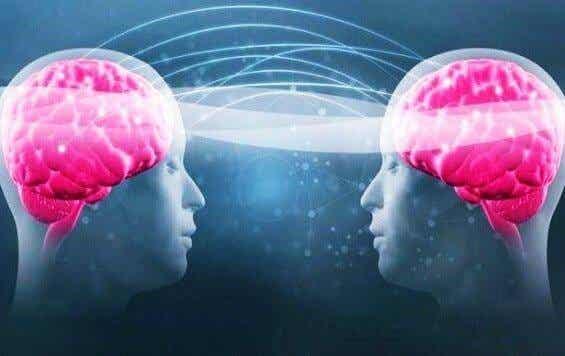 Tryptofaani ja serotoniini: miksi hyvinvointisi riippuu niistä