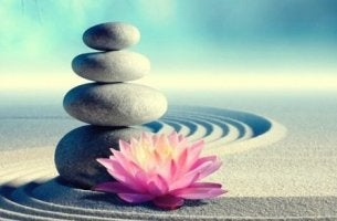 kivipino ja lotuskukka