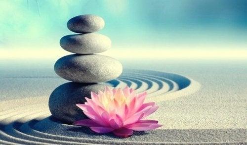 7 zen-käskyä, jotka muuttavat elämäsi