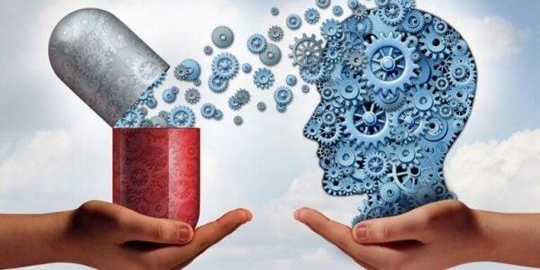pilleristä lisää muttereita aivoihin