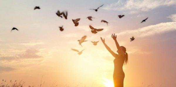 nainen kurottelee lintuja