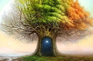 puutesti: puu eri vuodenaikoina