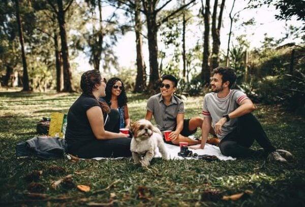 ystävät piknikillä