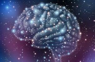 erikoislaatuiset aivot avaruudessa