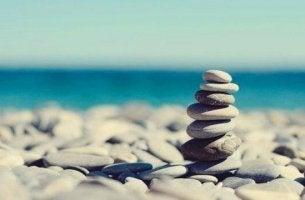 pino kiviä