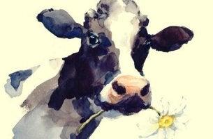 lehmä on rutiinimme