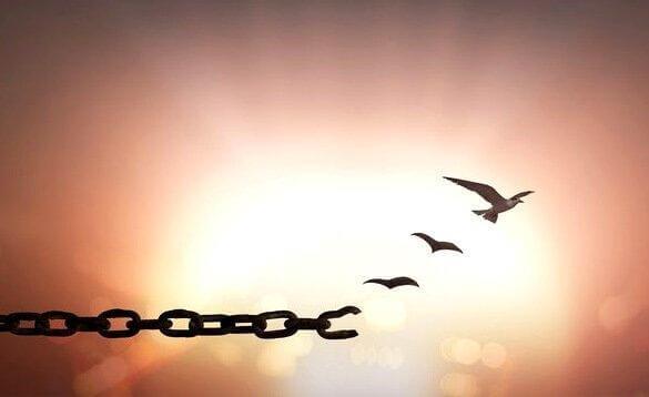 linnut vapautuvat ketjusta