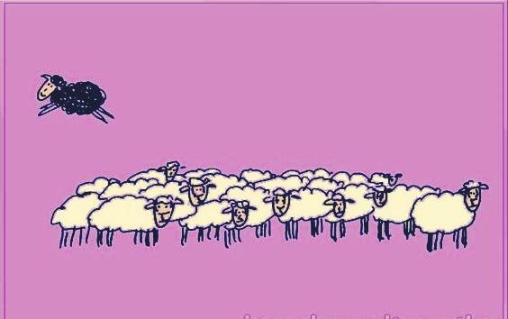 musta lammas hyppää pois valkoisten lampaiden ryhmästä