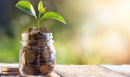 5 vinkkiä hoitaaksemme raha-asioitamme paremmin