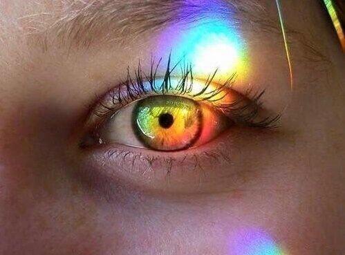 silmä ja prisma