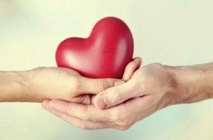 sydän kaksissa käsissä