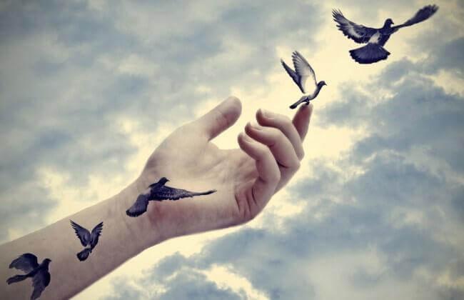 linnut pääsevät lentoon ihmisen kädeltä